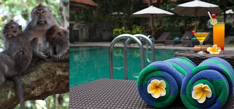 Champlung Sari Hotel - Ubud Bali